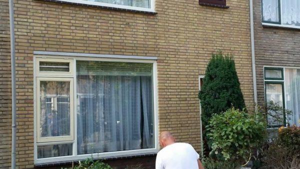 Gerberalaan, Naaldwijk