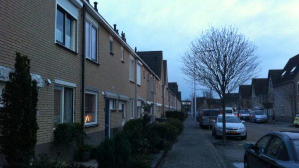 Johannes Vermeerstraat , Monster
